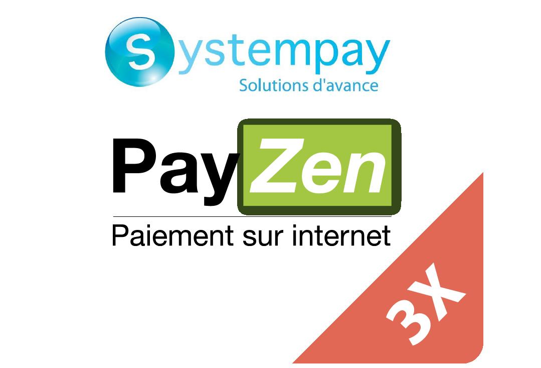 3XPayzenPayment.png
